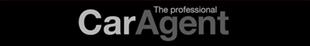 The Professional Car Agent Logo
