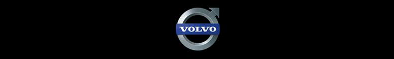 Volvo Cars Reading Logo
